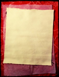 5. Cubrir con la otra masa de hojaldre - ricoprire con l'altra lamina di pasta sfoglia