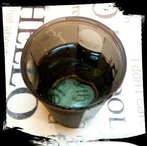1. Hidratar la gelatina - idratare la colla di pesce
